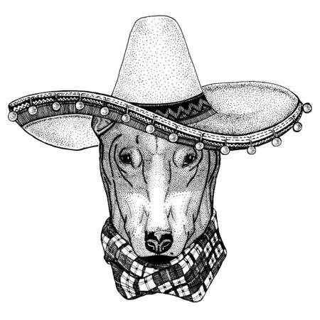 Mexican sombrero. National hat. Cinco de mayo. Day of the dead. Ilustración de vector