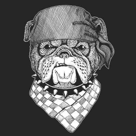 Bulldog, dog. Bandana. Biker, pirate. Portrait of cute animal. Illustration