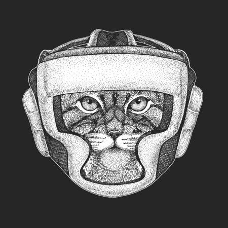 Pallas cat head. Manul head. Wild cat portrait.