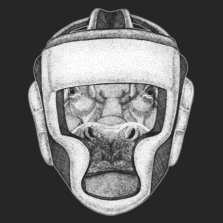 Portrait of hippopotamus, hippo. Boxing helmet. Boxer. Wild african animal.