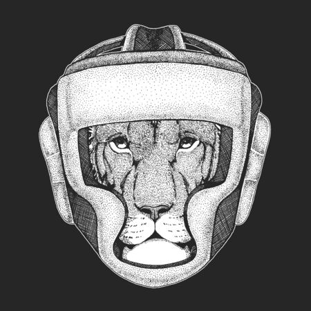 Lion head. Wild animal portrait. Boxing helmet. Boxer. Face of african cat.