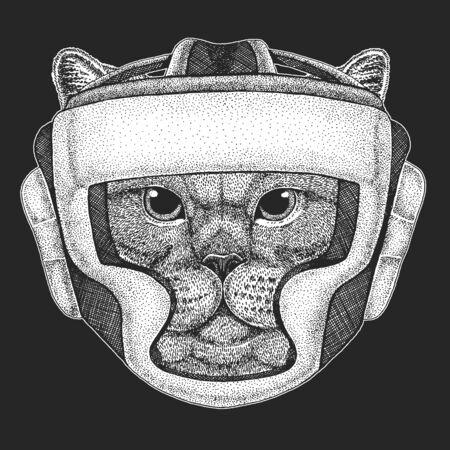 British shorthair cat. Scottish fold. Boxing helmet. Boxer. Cute kitten. Cool animal. Stock Illustratie