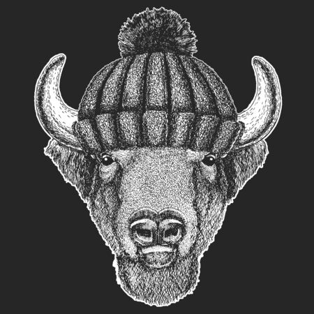 Buffalo, bison, bull head. Winter knitted hat. Portait of animal.