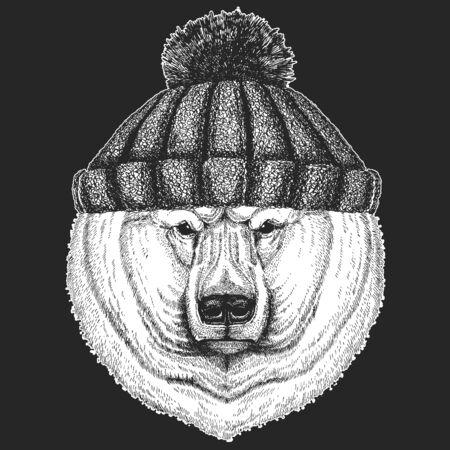 Polar bear portrait. Winter knitted hat. Head of wild animal