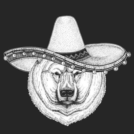 Polar bear portrait. Sombrero is traditional mexican hat. Mexico. Head of wild animal