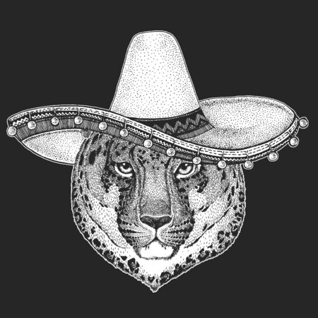 Leopard, jaguar face. Sombrero is traditional mexican hat. Mexico. Portrait of wild animal.