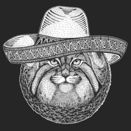 Pallas cat head. Sombrero is traditional mexican hat. Mexico. Manul head. Wild cat portrait. Ilustración de vector
