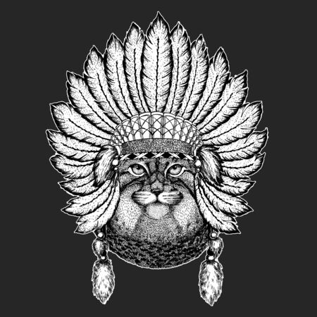 Pallas cat head. Manul head. Indian tribal traditional headdress with feathers. Wild cat portrait.