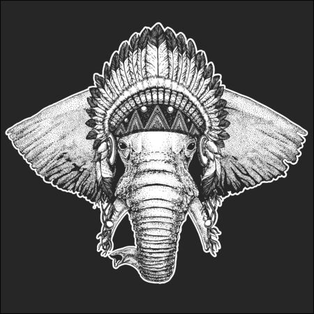Elephant head. Portrait of wild animal. Indian tribal traditional headdress with feathers.