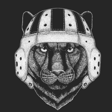 Black panther, puma. Rugby leather helmet. Head of animal. Wild cat portrait.