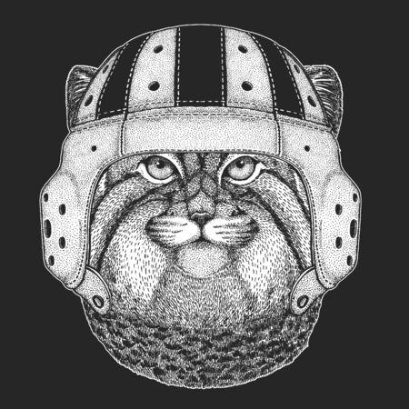 Pallas cat head. Rugby leather helmet. Manul head. Wild cat portrait. Ilustración de vector