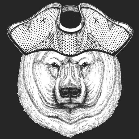 Polar bear portrait. Pirate cocked hat. Sailor. Head of wild animal