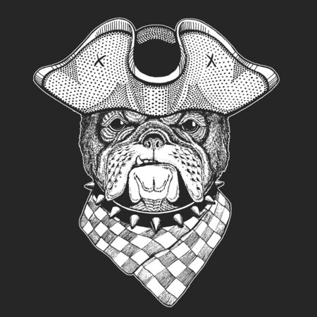 Bulldog, dog. Pirate cocked hat. Portrait of cute animal. Illustration