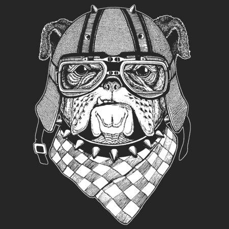 Bulldog, dog. Vintage motorcycle leather helmet. Portrait of cute animal. Illustration