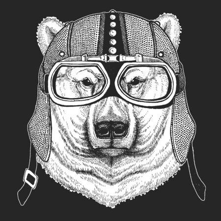 Polar bear portrait. Vintage motorcycle leather helmet. Head of wild animal Illusztráció