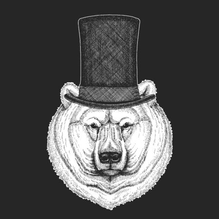 Polar bear portrait. Top hat, cylinder. Head of wild animal