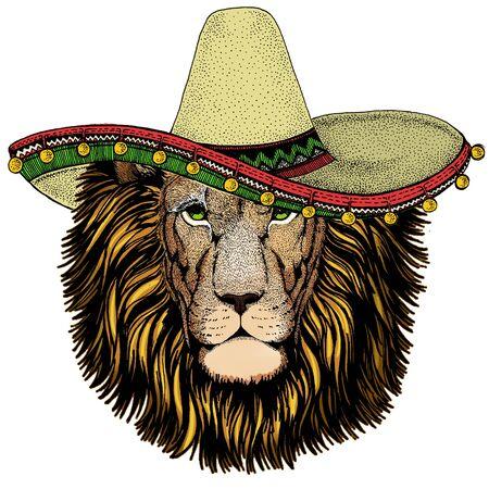 Lion head. Sombrero mexican hat. Wild animal portrait. Face of african cat. Archivio Fotografico