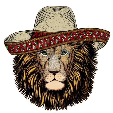 Lion head. Wild animal portrait. Sombrero mexican hat. Face of african cat. Archivio Fotografico