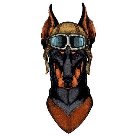 Vintage aviator helmet with goggles.