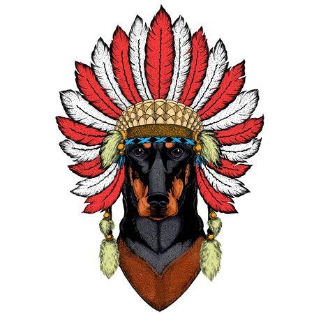 Dog, doberman. Portait of animal. Indian headdress with feathers. Boho style.