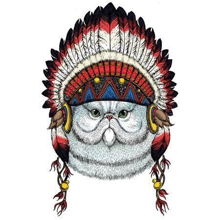American native ethnic Indian traditional headdress.