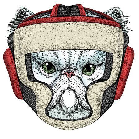 Boxing helmet. Sport competition fighting.