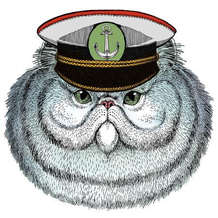 Persian longhair cat. Pet portait. Animal head. Kitty face. Vectores