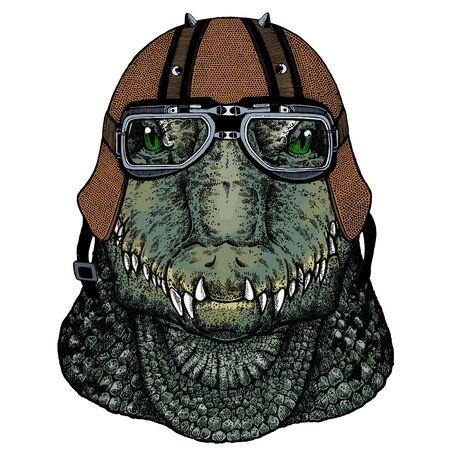 Motorcycle helmet. Mascot, character Face of wild animal. Ilustração