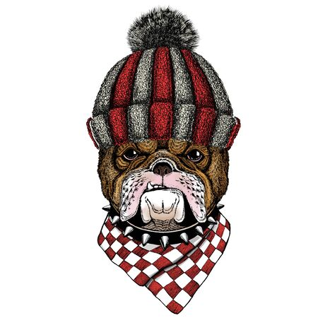 Knitted wool winter hat. Wild animal. Illustration