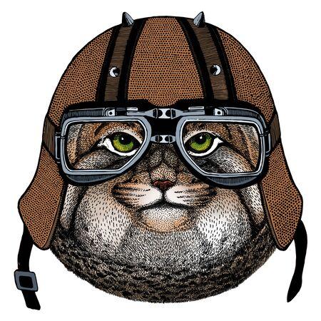 Motorcycle helmet. Mascot, character Face of wild animal. Ilustración de vector