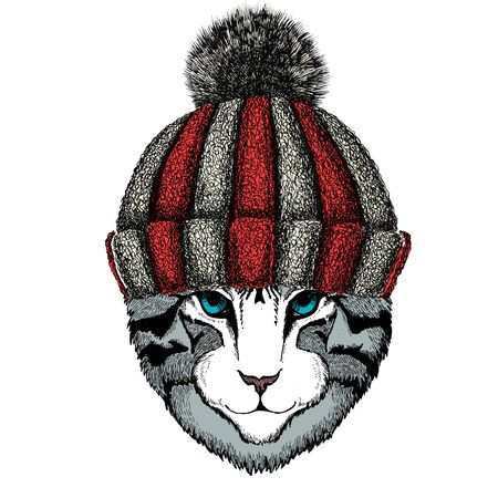 Knitted wool winter hat. Wild animal. Vectores