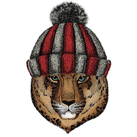 Knitted wool winter hat. Wild animal. Ilustração
