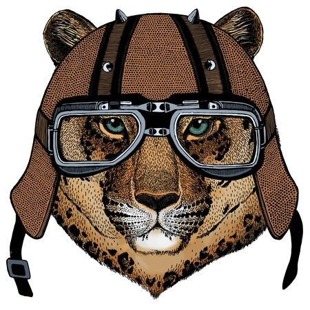 Motorcycle helmet. Mascot, character Face of wild animal.