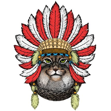 Pallas cat head. Manul head. Wild cat portrait. Indian headdress with feathers. Boho style.