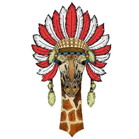 Giraffe head. Portrait of wild animal. Indian headdress with feathers. Boho style.