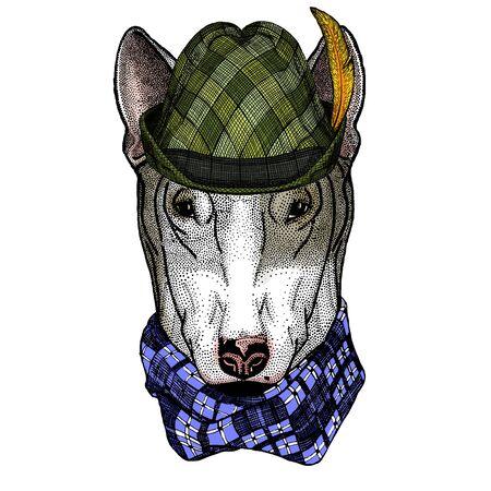 Bullterrier, dog. Austrian bavarian tirol hat. Beer festival. Oktoberfest.