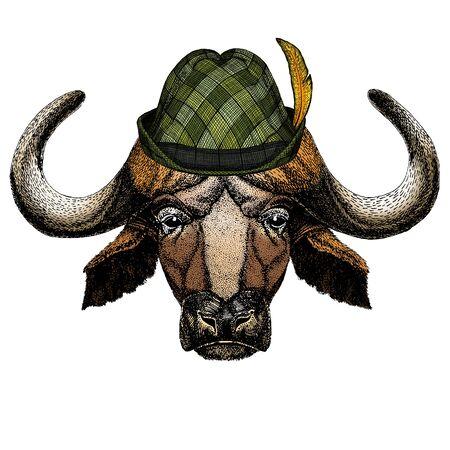 Portrait of buffalo, bison, bull, cow. Austrian bavarian tirol hat. Beer festival. Oktoberfest. Illustration