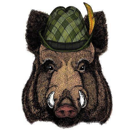Portrait of wild hog, boar, pig. Austrian bavarian tirol hat. Beer festival. Oktoberfest. Illustration