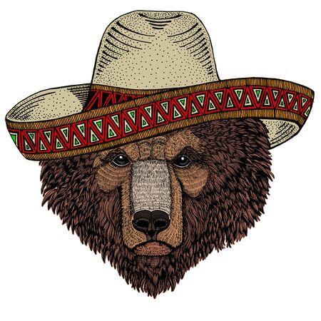 Wild bear. Sombrero mexican hat. Portrait of animal for emblem, logo, tee shirt. Illustration