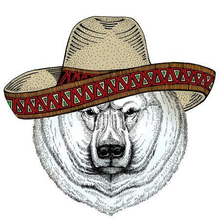 Polar bear portrait. Sombrero mexican hat. Head of wild animal