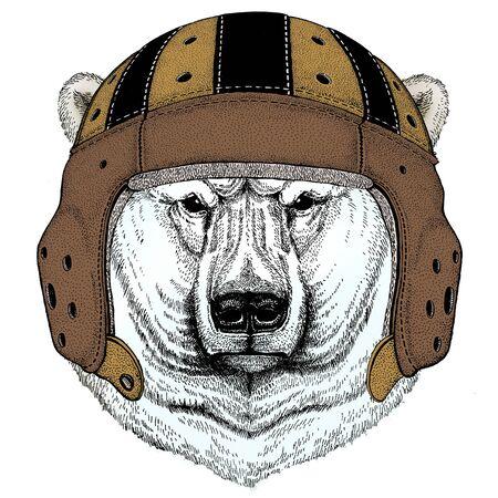 Polar bear portrait. Rugby leather helmet. Head of wild animal Illustration