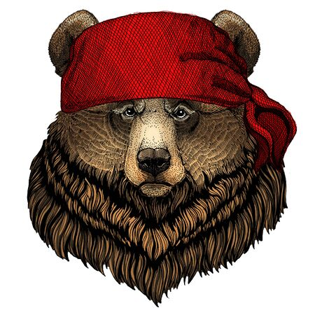 Grizzly bear. Portrait of wild animal. Bandana. Pirate. Motorcycle.