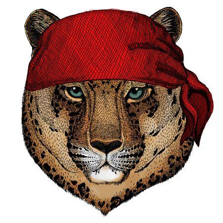 Leopard, jaguar face. Portrait of wild animal. Bandana. Pirate. Motorcycle.