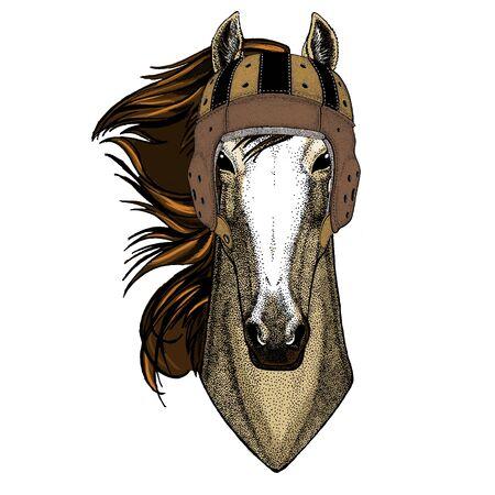 Animal with rugby helmet. Vintage retro design.