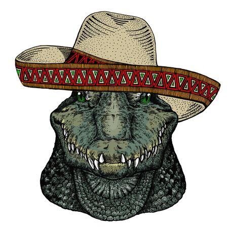 Alligator. Sombrero mexican hat. Portrait of african agressive animal. Ilustração