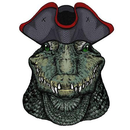 Alligator. Crocodilia. Portrait of african agressive animal. Cocked hat. Stock fotó