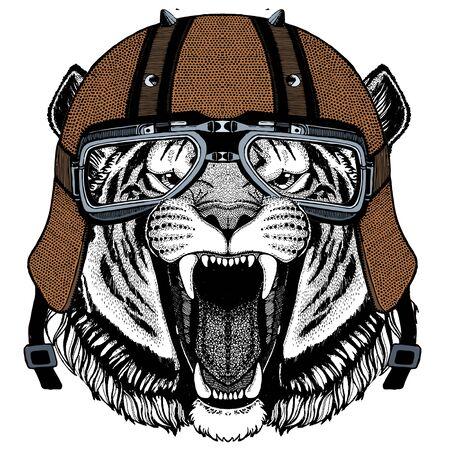 Tiger portrait. Wild cat head. Motorcycle helmet. 일러스트
