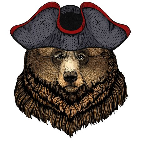 Grizzly bear. Portrait of wild animal. Cocked hat. Banque d'images