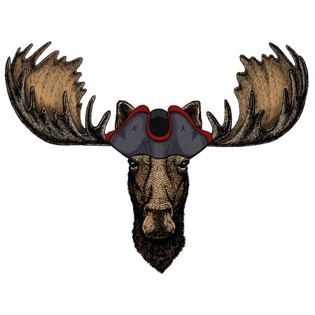 Moose head. Portrait of funny animal. Cocked hat. 版權商用圖片