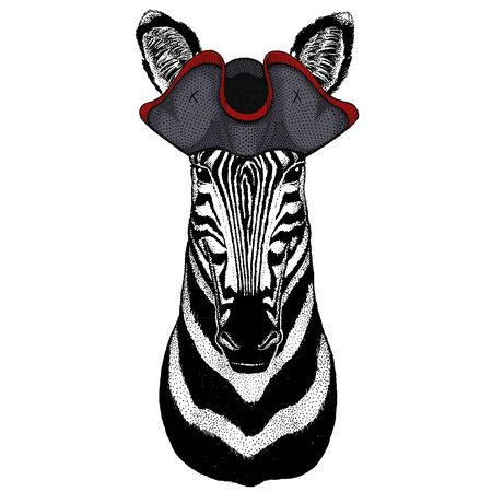 Zebra portrait. Head of wild animal. Cocked hat. Banque d'images